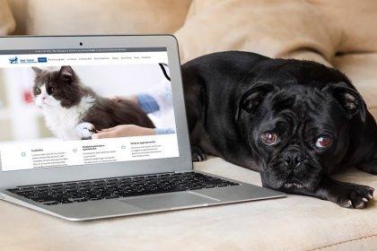 Sito web clinica veterinaria tre torri