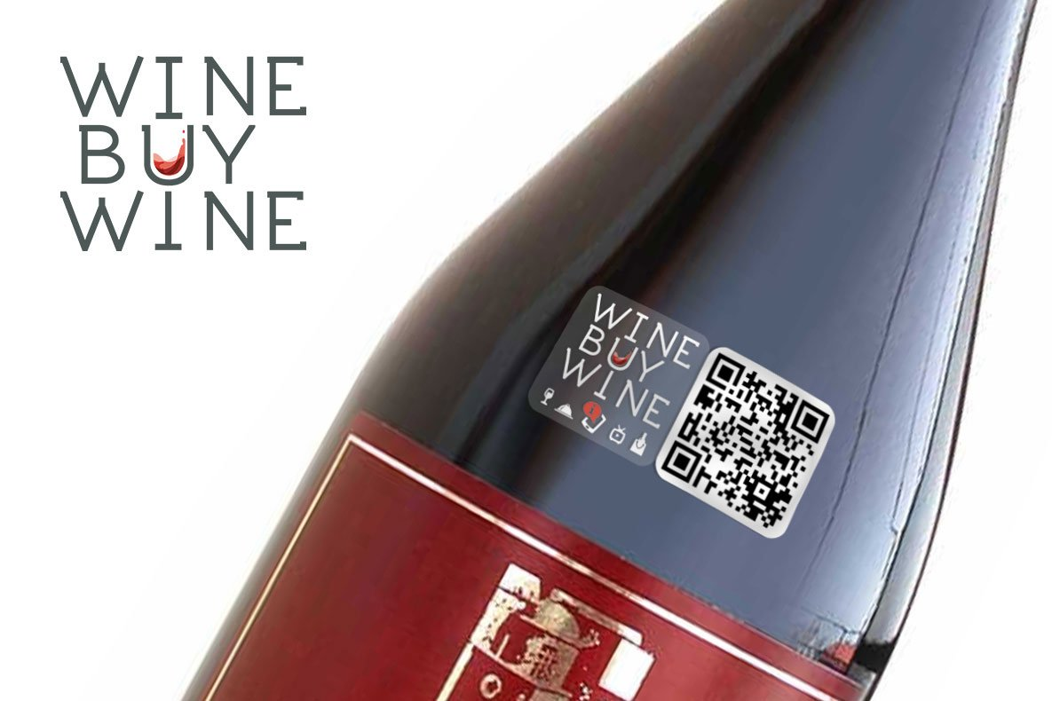 Sito eCommerce wine buy wine logo
