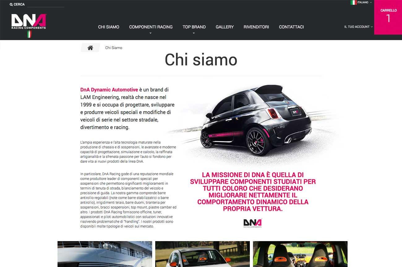 portfolio-ecommerce_DnaRacing_2