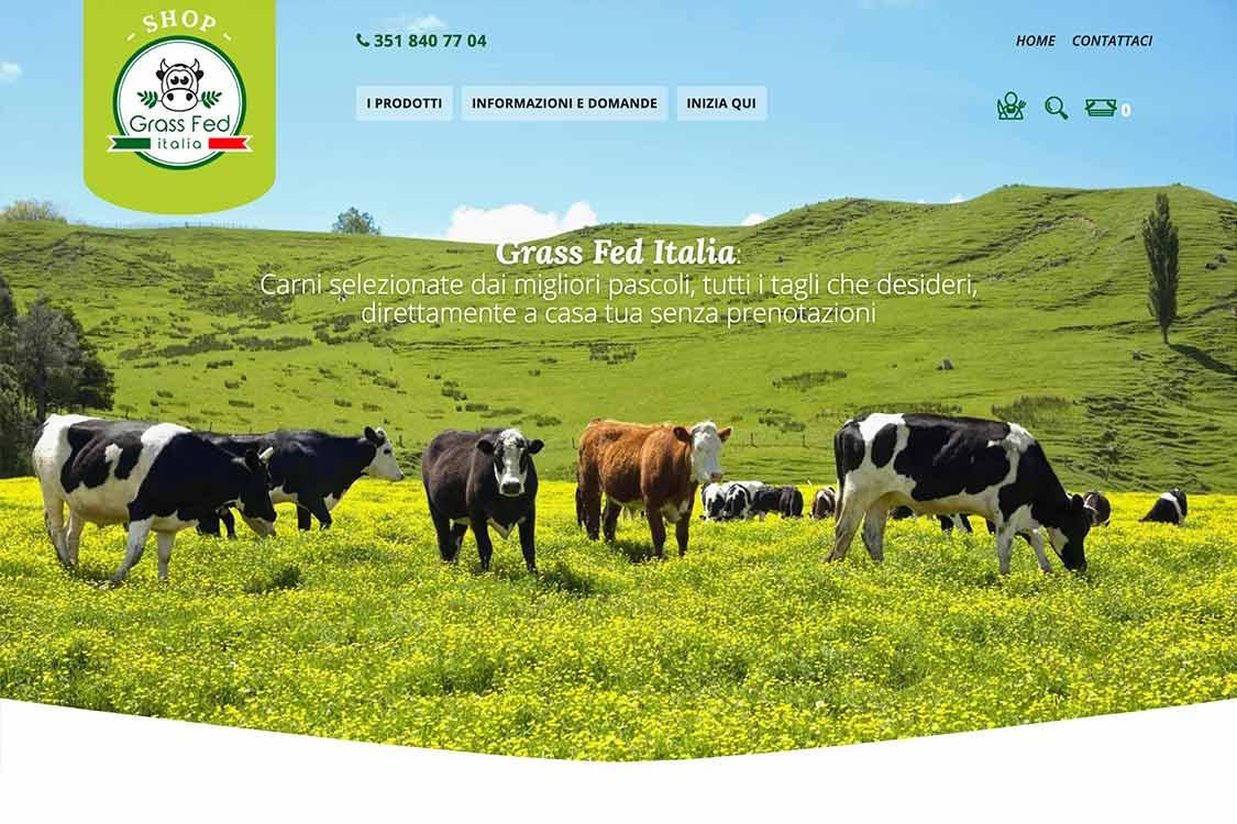 portfolio-ecommerce-grassfed-home